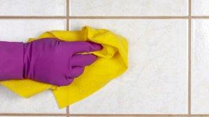 como tirar limo do banheiro