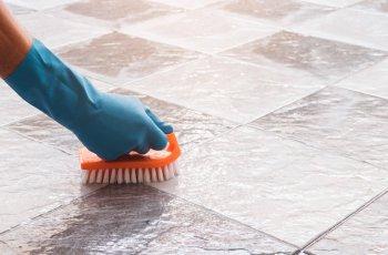 3 dicas ótimas de como limpar o limo das superfícies